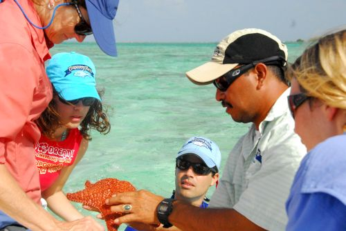Turneffe Atoll eco tours and education