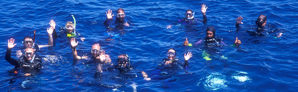We have scuba diving equipment available to rent here at Turneffe Flats
