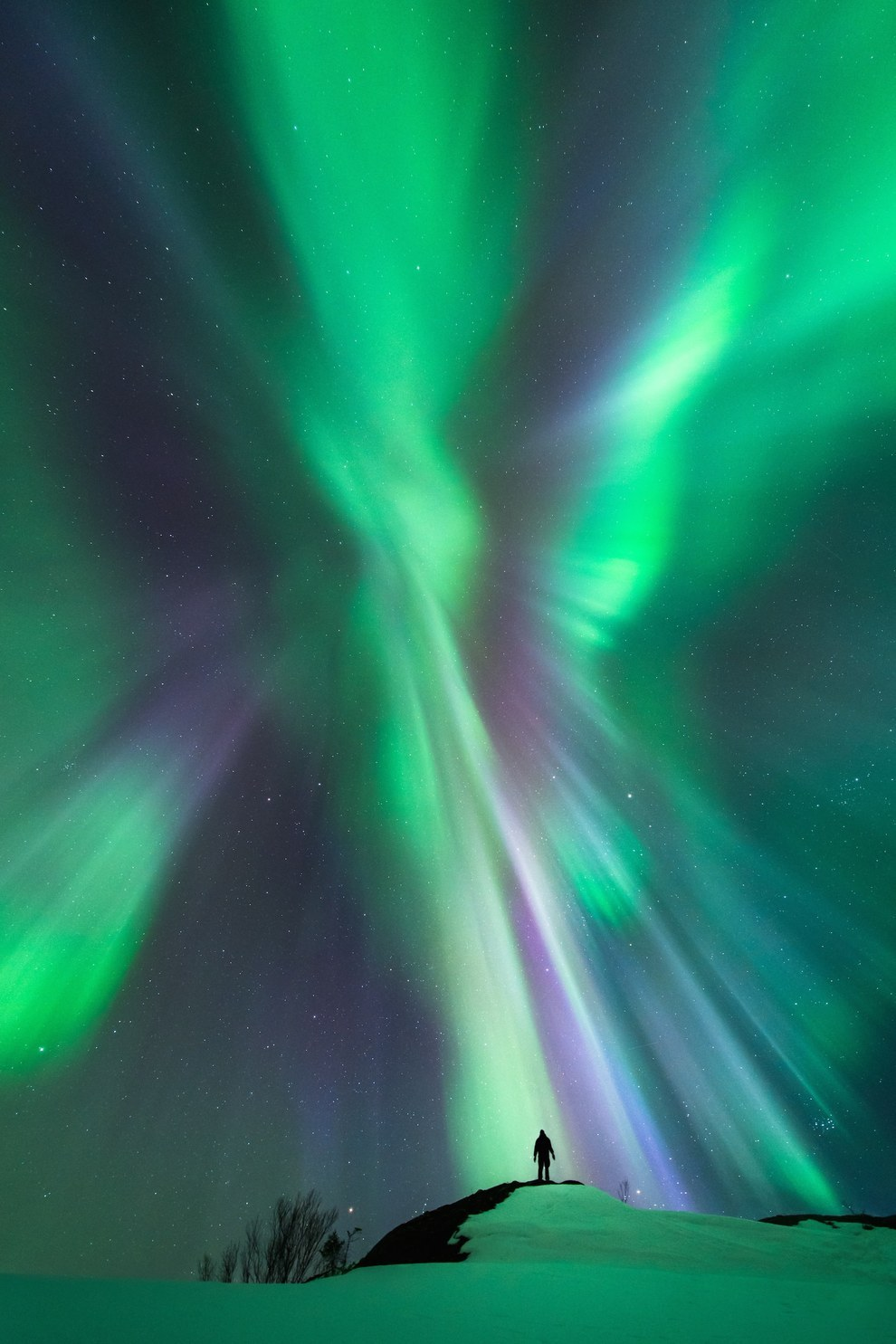 """Highly Commended – """"Interaction"""" by Tommy Eliassen, Norway"""