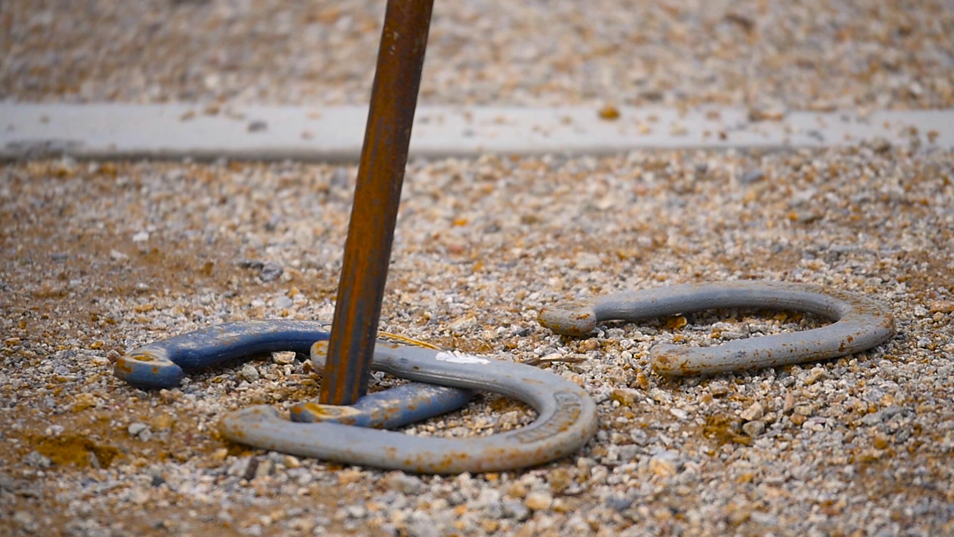 55. horseshoes.jpg