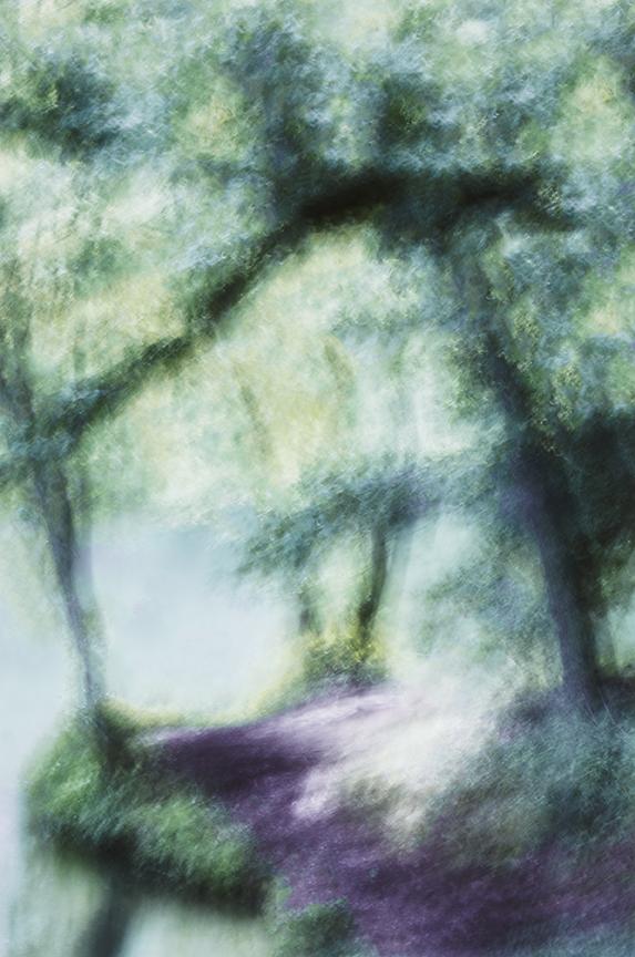 Cathy prints0290.jpg