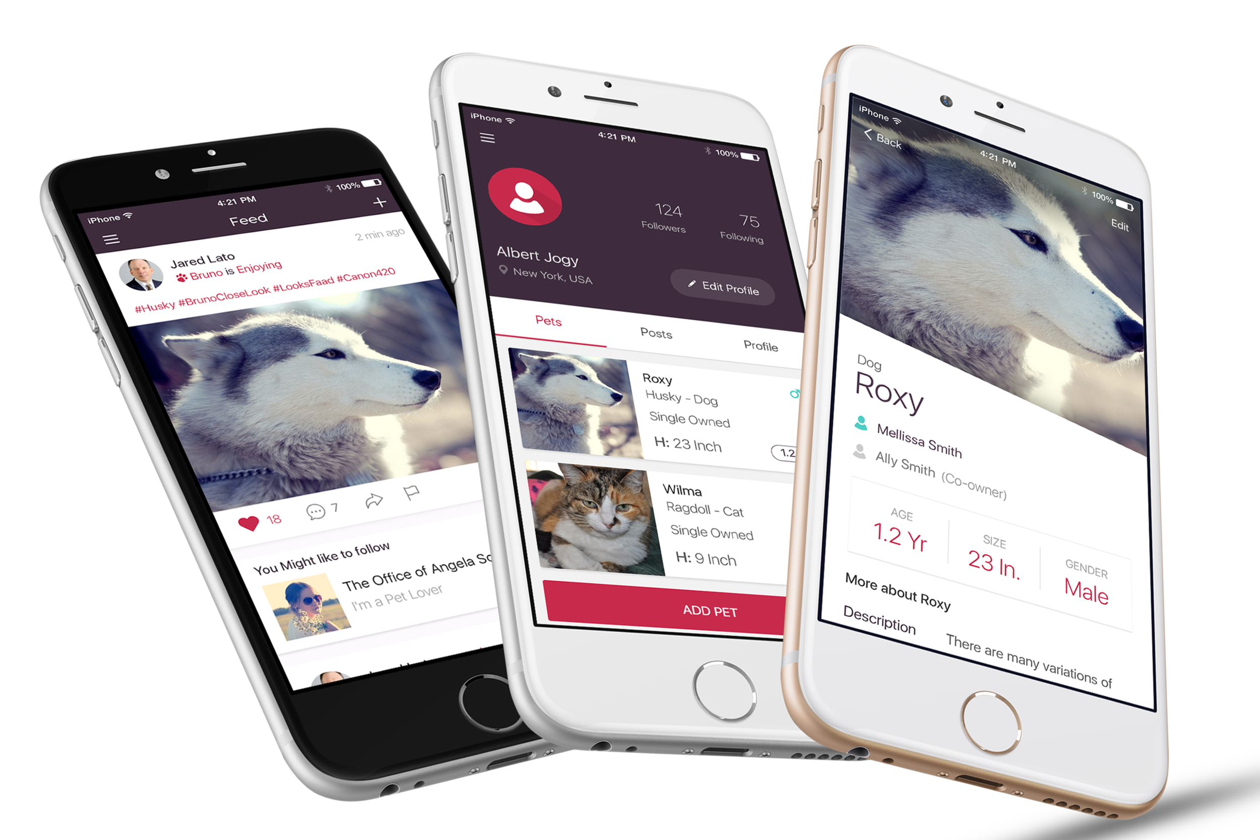 PetVibe - Connecting the community one pet at a time.
