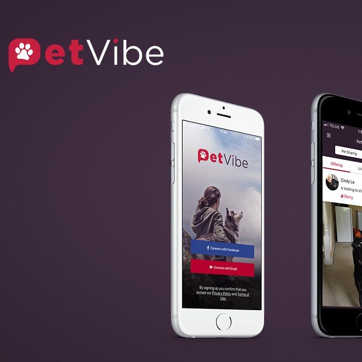 PetVibe-1280x720.jpg