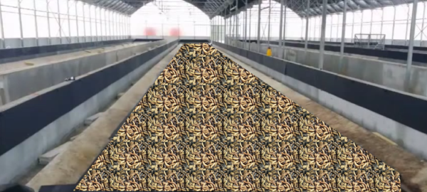 BSFL farmers are so secretive we can only share this artist's rendering of what a large BSFL facility may look like.