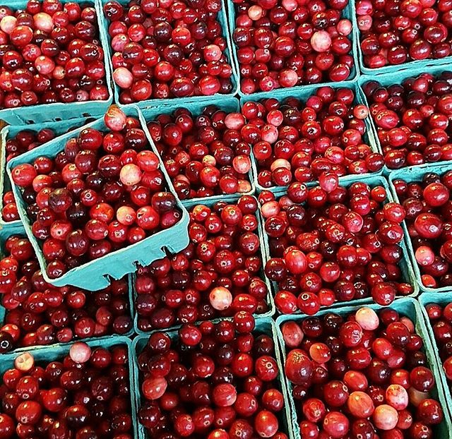 #armstrongtravels | Fresh cranberries spotted @pikeplacepublicmarket in #Seattle. 💡 How do you know if they're good quality? BOUNCE THEM! ⛹🏀⛹🏀 The best #cranberries will #bounce on a hard surface. Unfortunately, fresh cranberries aren't the most pleasant #berry to eat; they're super tart and bitter. 🍴 They're best after a little cooking to bring out the sweetness. We like simmering them in #sugar & water to make a #syrup topping for pound #cake. And any sandwich is better with homemade cranberry #chutney. Trust us! 😋 × #produce #producedepartment #washington #washingtonstate #northwest #pikeplacemarket #pikeplaceholidays #cranberry #fall #winter #fruit #fruits #cooking #recipes #vegan #vegetarian #hawaii #luckywelivehawaii #farmersmarket