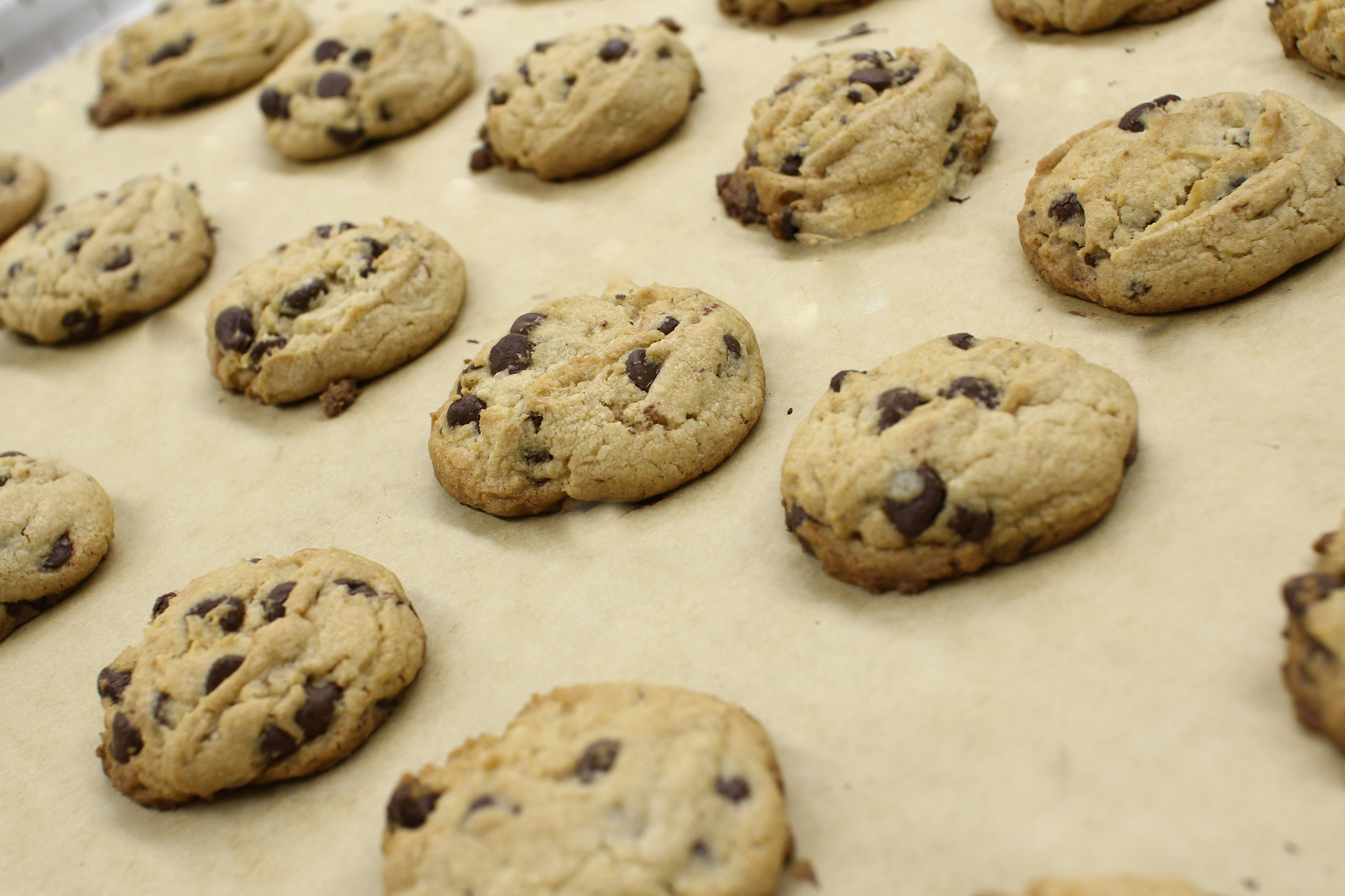 Chocolate Chip Cookies, photo taken by Steve Hazel
