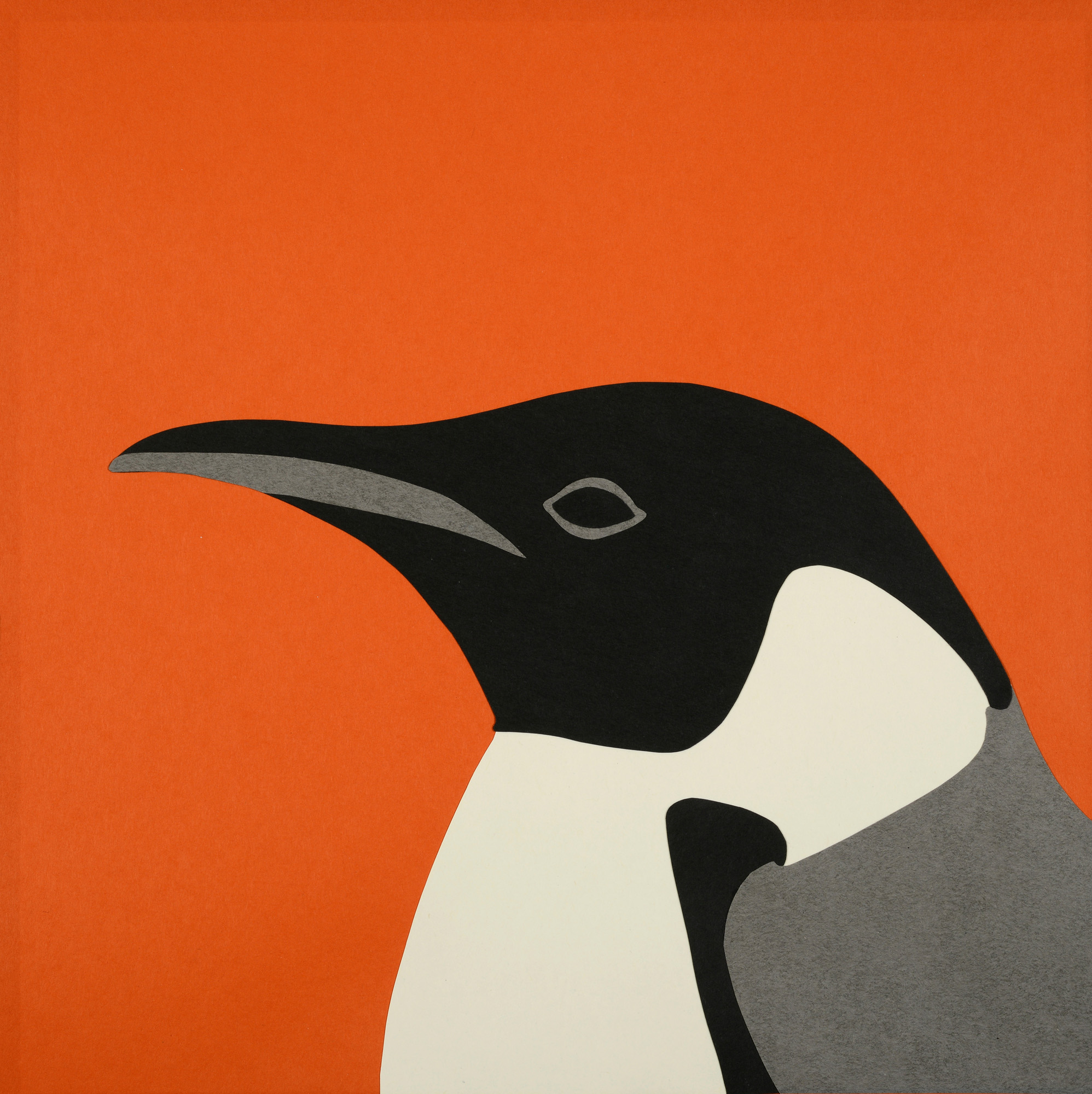 Rankin Willard - Penguin.jpg