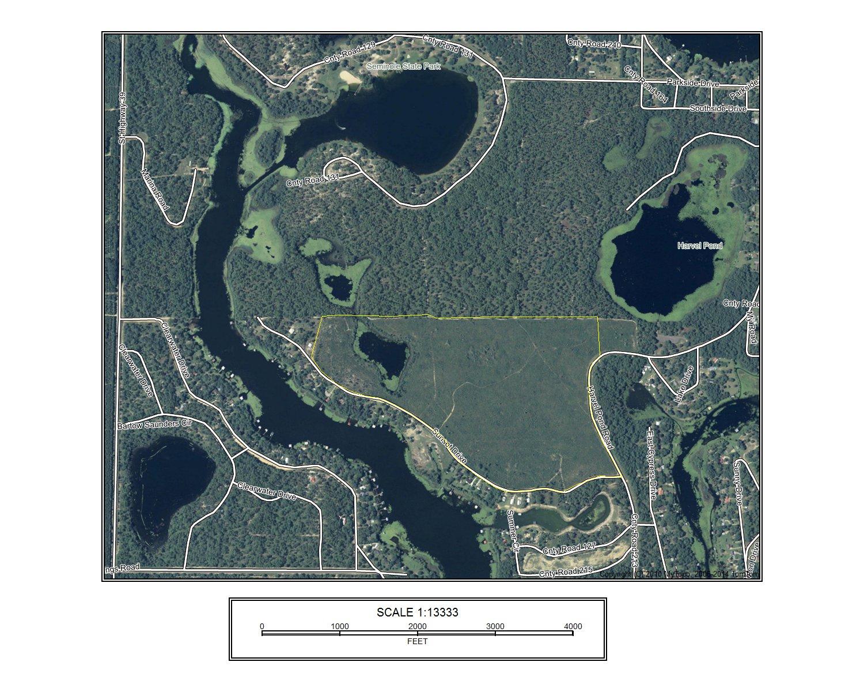 Slash Pine Pond.jpg