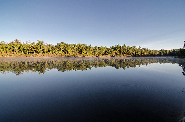 Recovery Camp_3 rivers realty_ recreational timberland_hunting_Southwest Georgia_lake_sunrise_pond.jpg