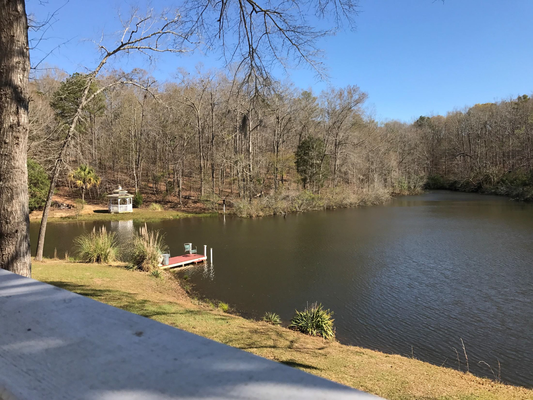 3riversrealty,plantation,middle-georgia-farm,secluded-living,private-get-away,mills-brock,georgia-land-for-sale,lake-view.jpg