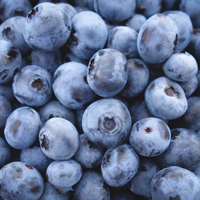BC BLUEBERRIES