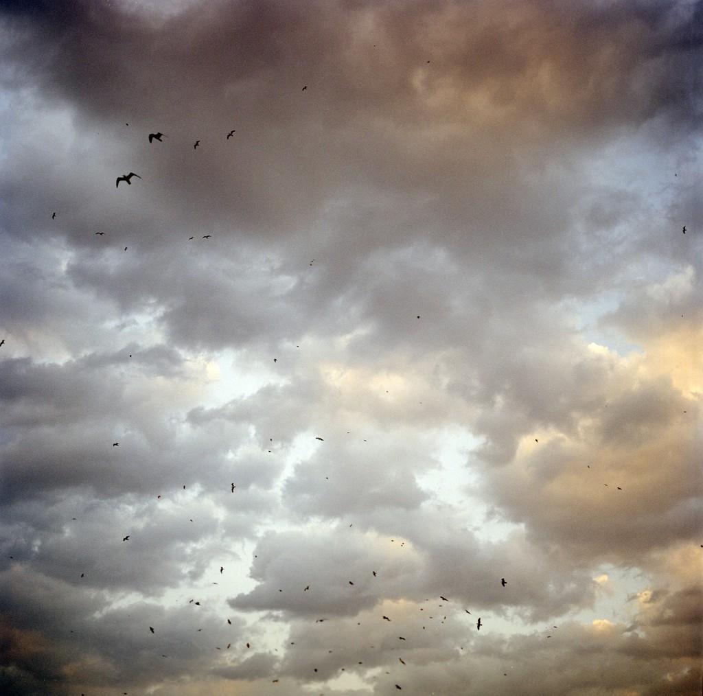 Photography by Olivia Arthur