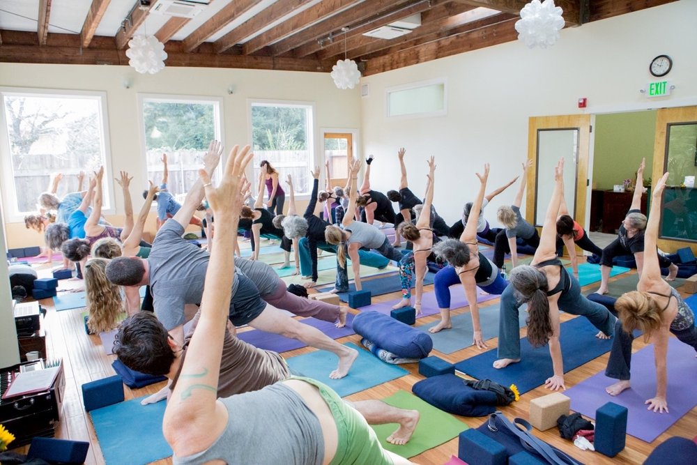 YOGA MOUNTAIN STUDIO