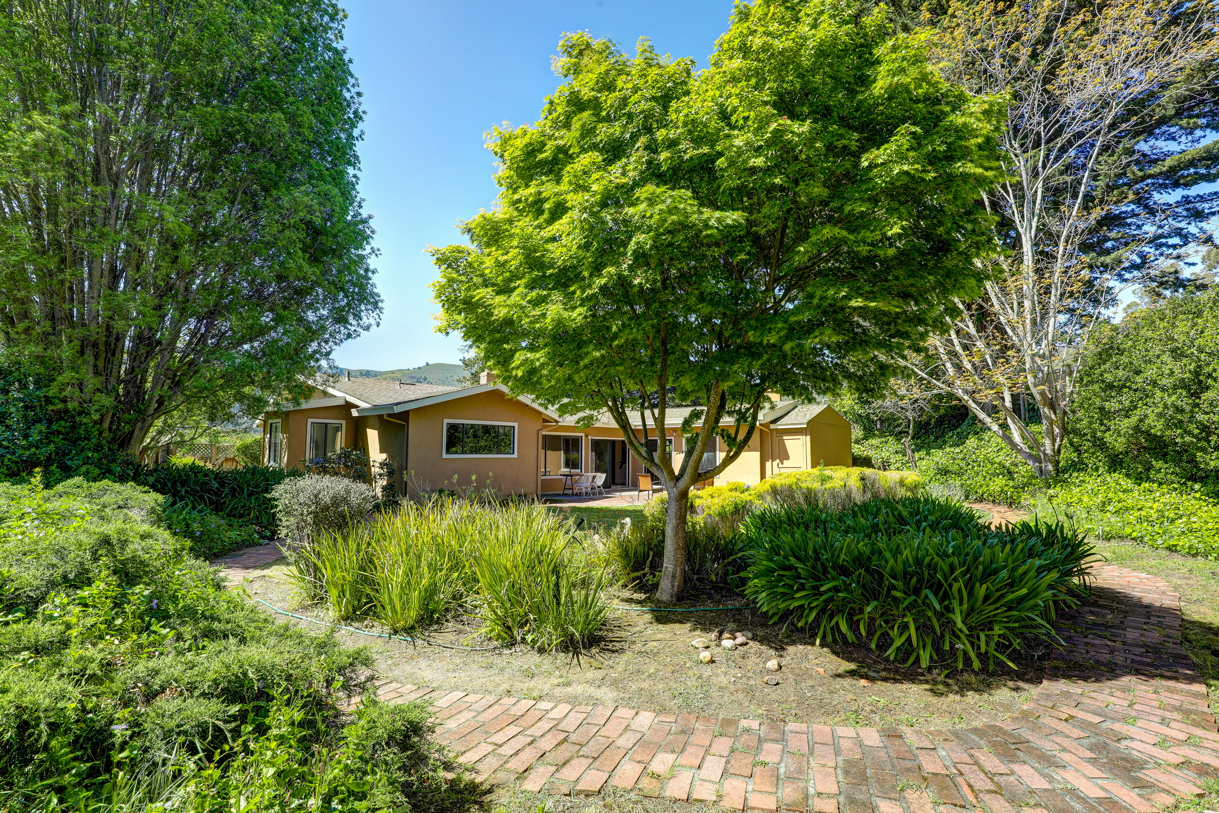 803 Everest Mill Valley's Best Realtor 32 - Own Marin Pacific Union - Marin County's Top Realtor.jpg