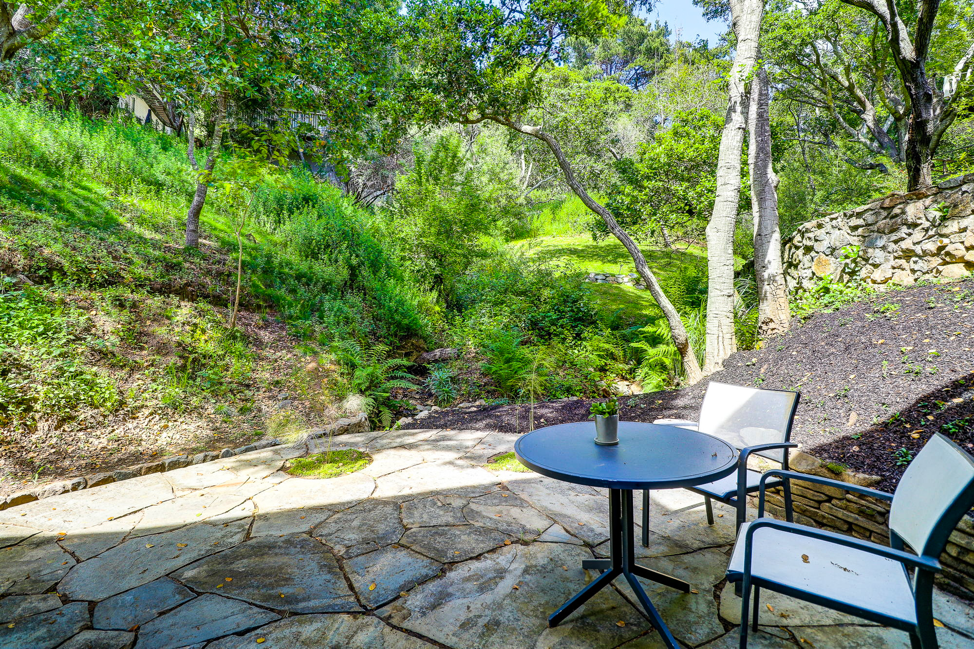 20 Fern Way, Mill Valley's Top Realtor - 20- Listed by Allie Fornesi - Own Marin with Compass Real Estate.jpg