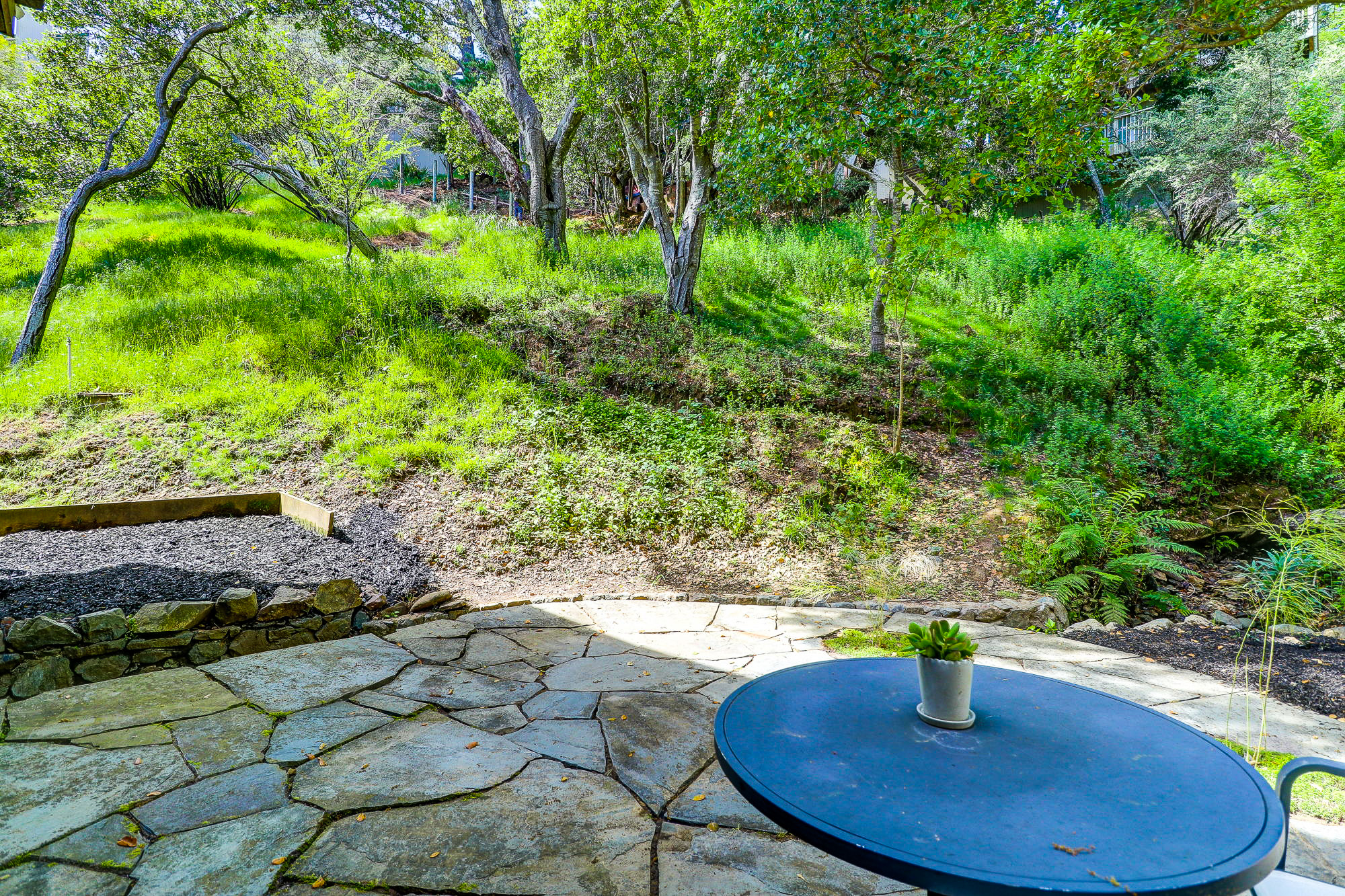 20 Fern Way, Mill Valley's Top Realtor - 21- Listed by Allie Fornesi - Own Marin with Compass Real Estate.jpg