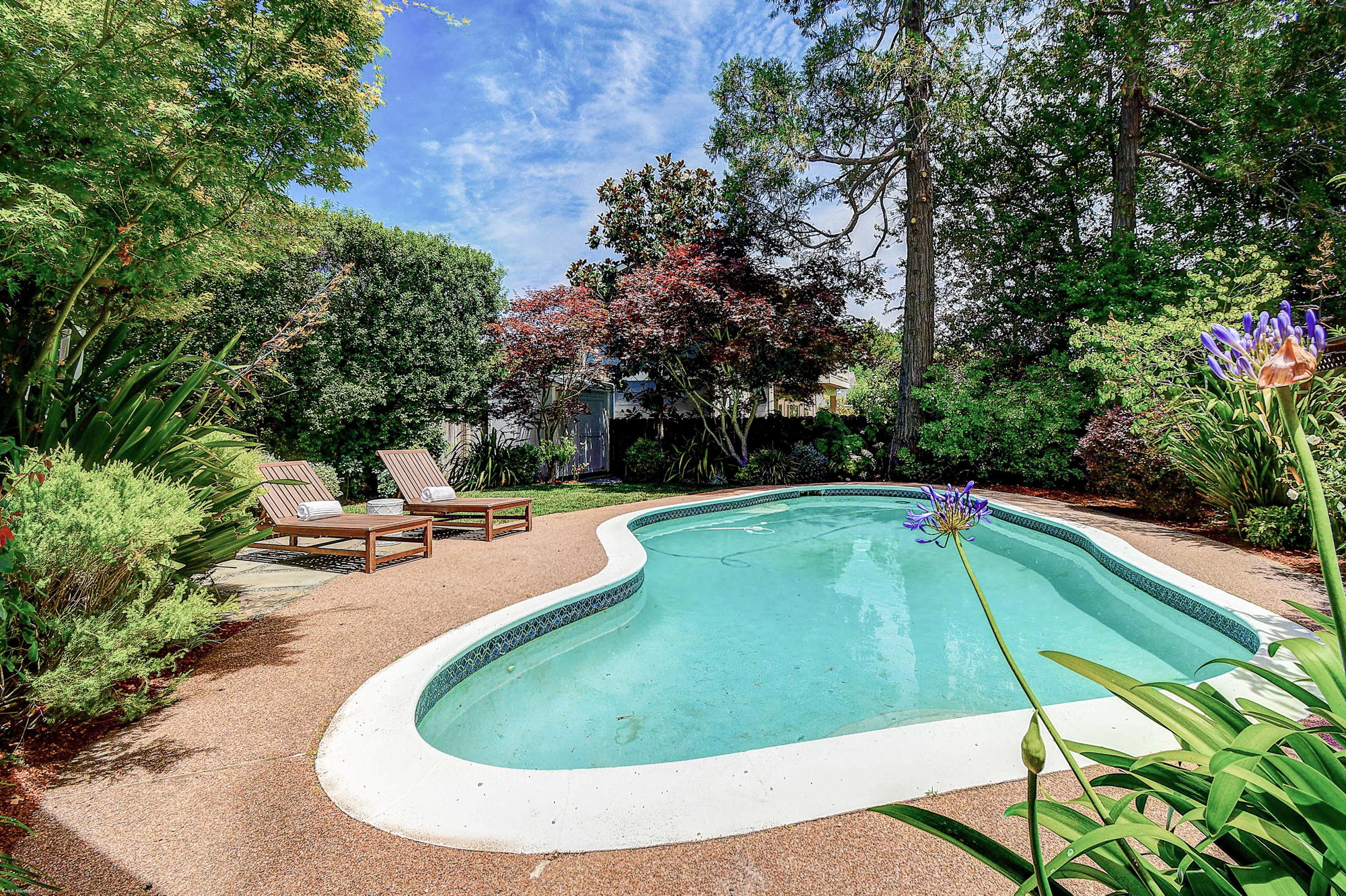 10 Broadway Kentfield's Top Realtor -6- Listed by Barr Haney | Team Own Marin with Compass Real Estate.jpg