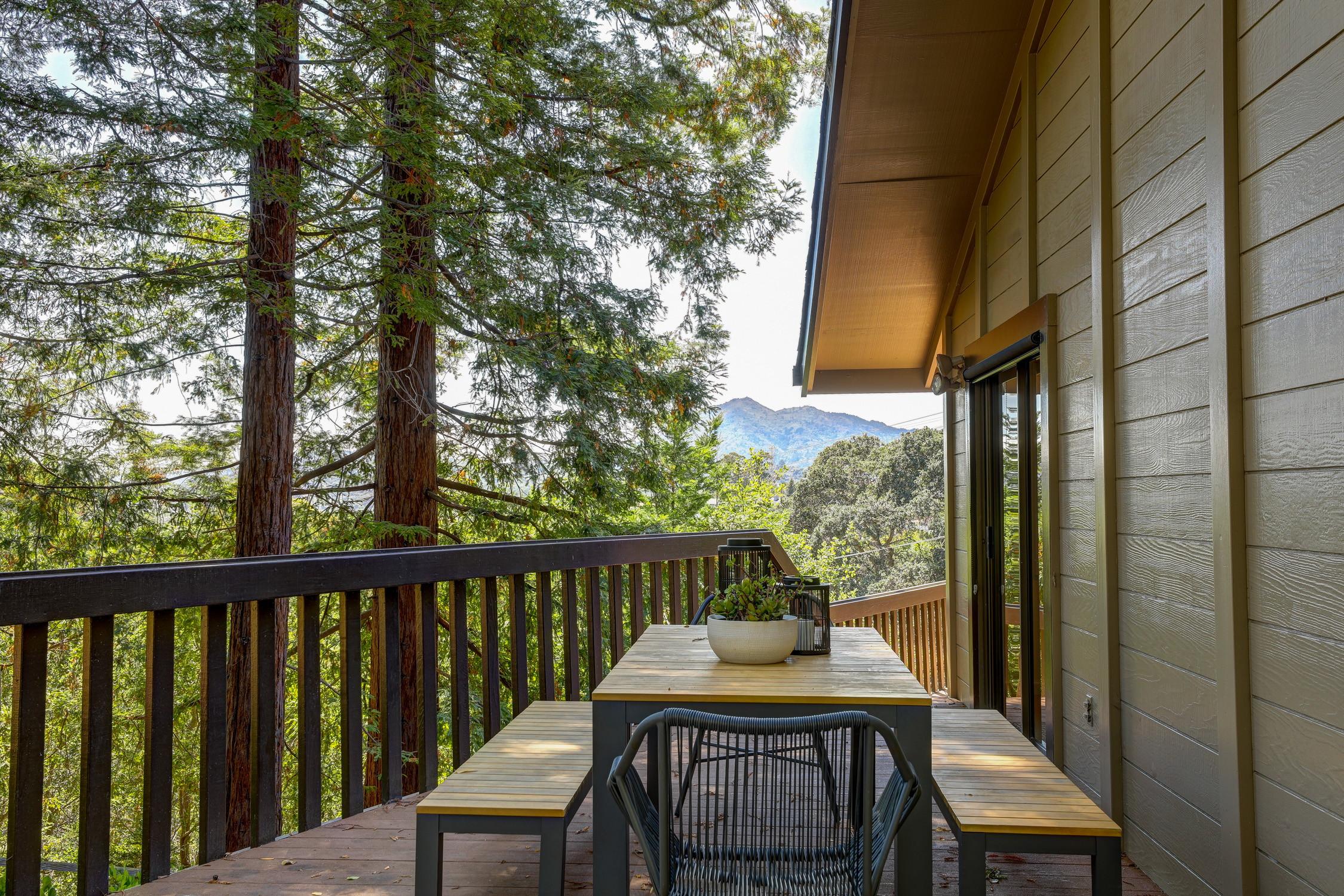 16Dorian 69 MLSSan Rafael Real Estate - Listed by Julia Fitzpatrick + Allie Fornesi Team Own Marin County .jpg