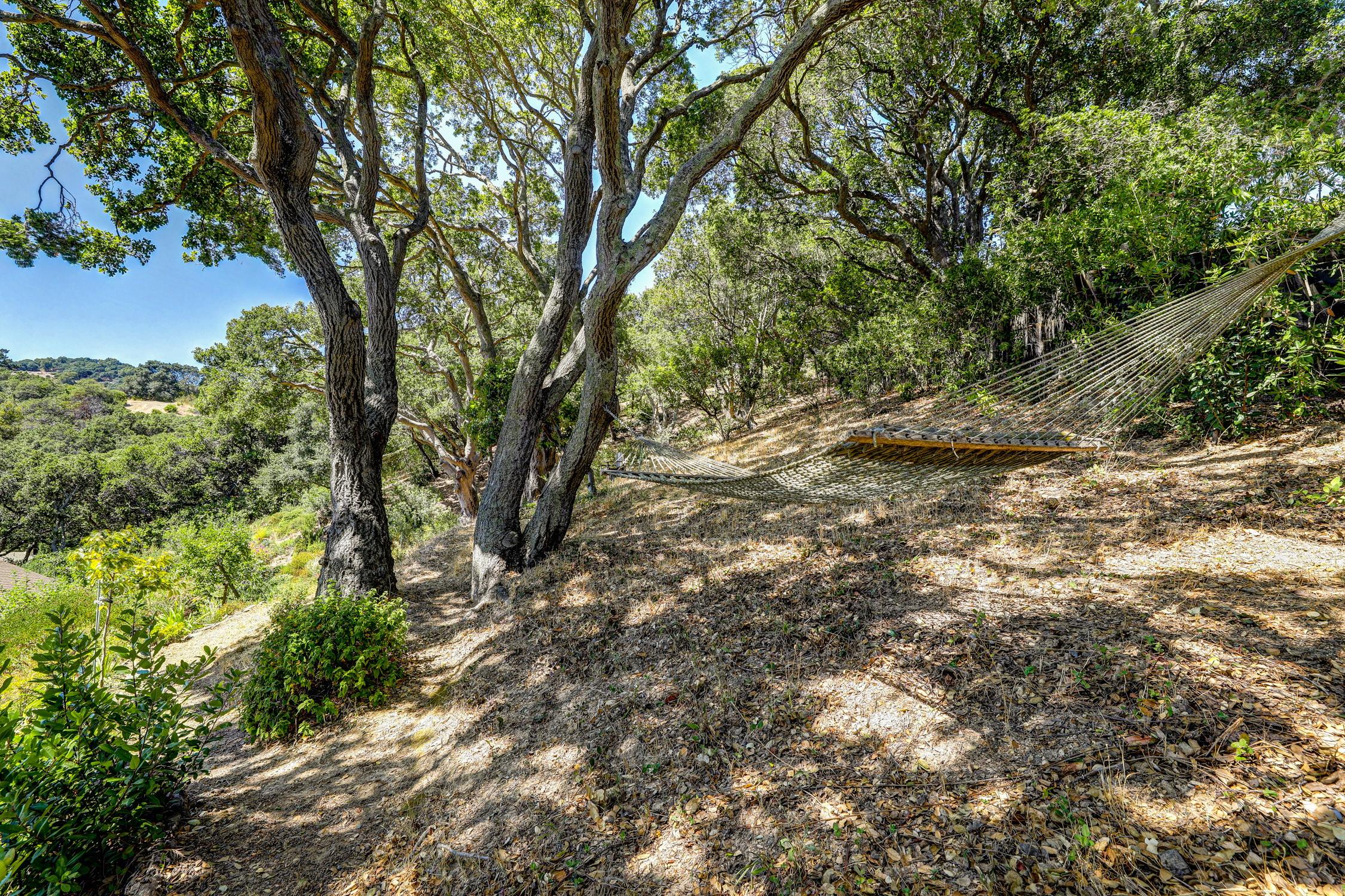 16Dorian 78 MLSSan Rafael Real Estate - Listed by Julia Fitzpatrick + Allie Fornesi Team Own Marin County .jpg