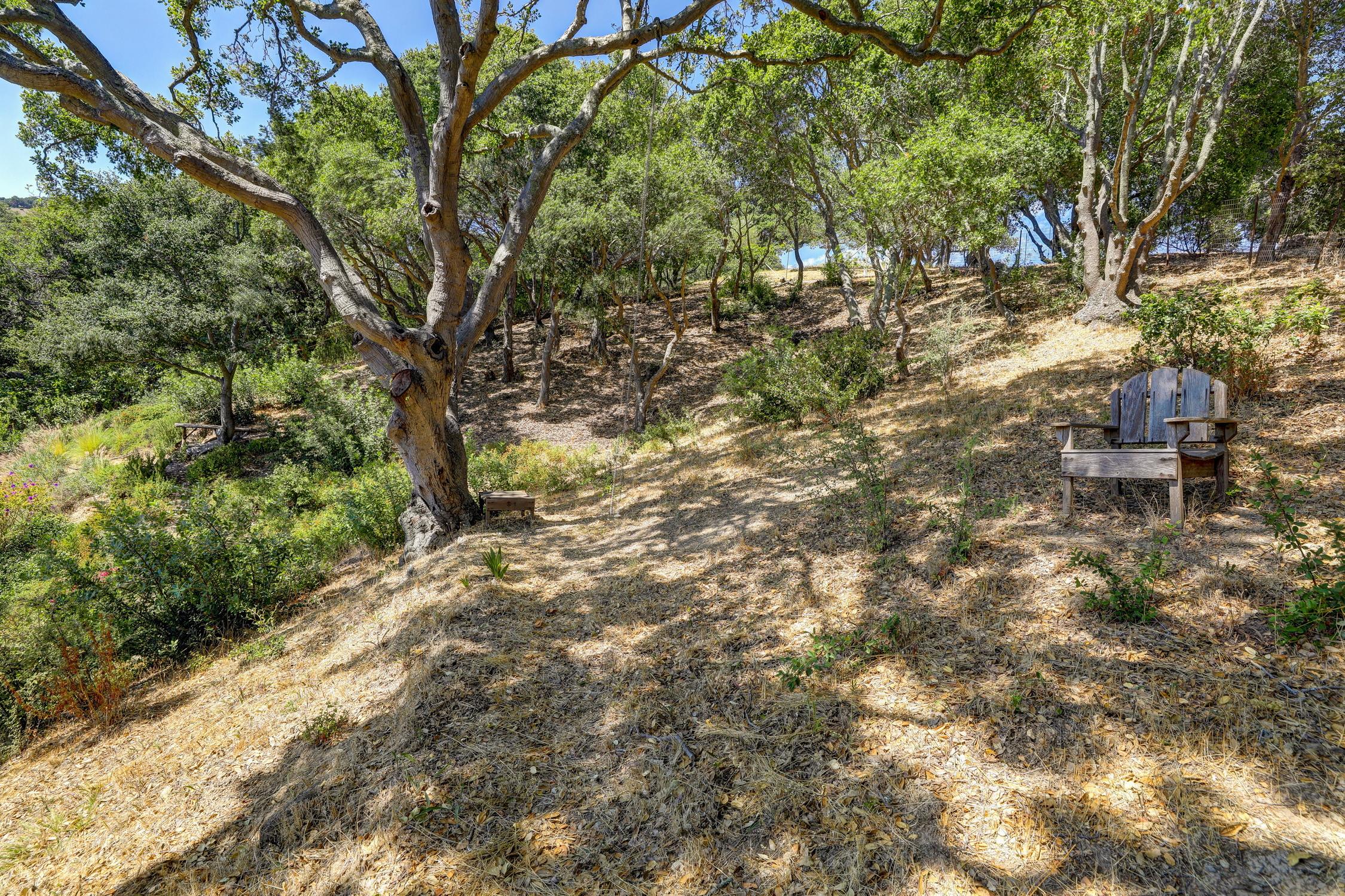 16Dorian 80 MLSSan Rafael Real Estate - Listed by Julia Fitzpatrick + Allie Fornesi Team Own Marin County .jpg