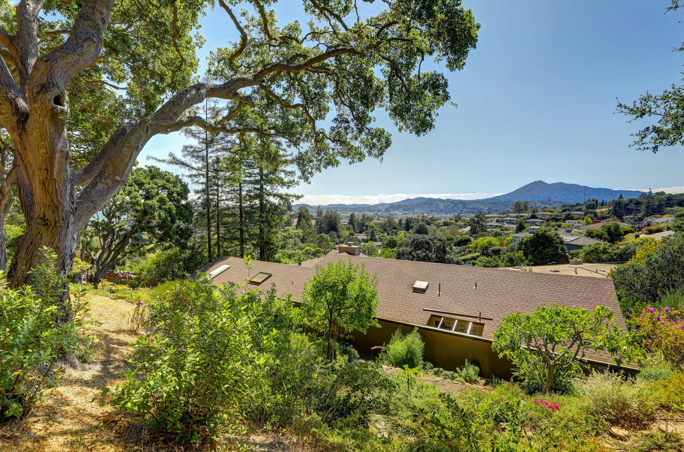 16Dorian 87 MLSSan Rafael Real Estate - Listed by Julia Fitzpatrick + Allie Fornesi Team Own Marin County .jpg