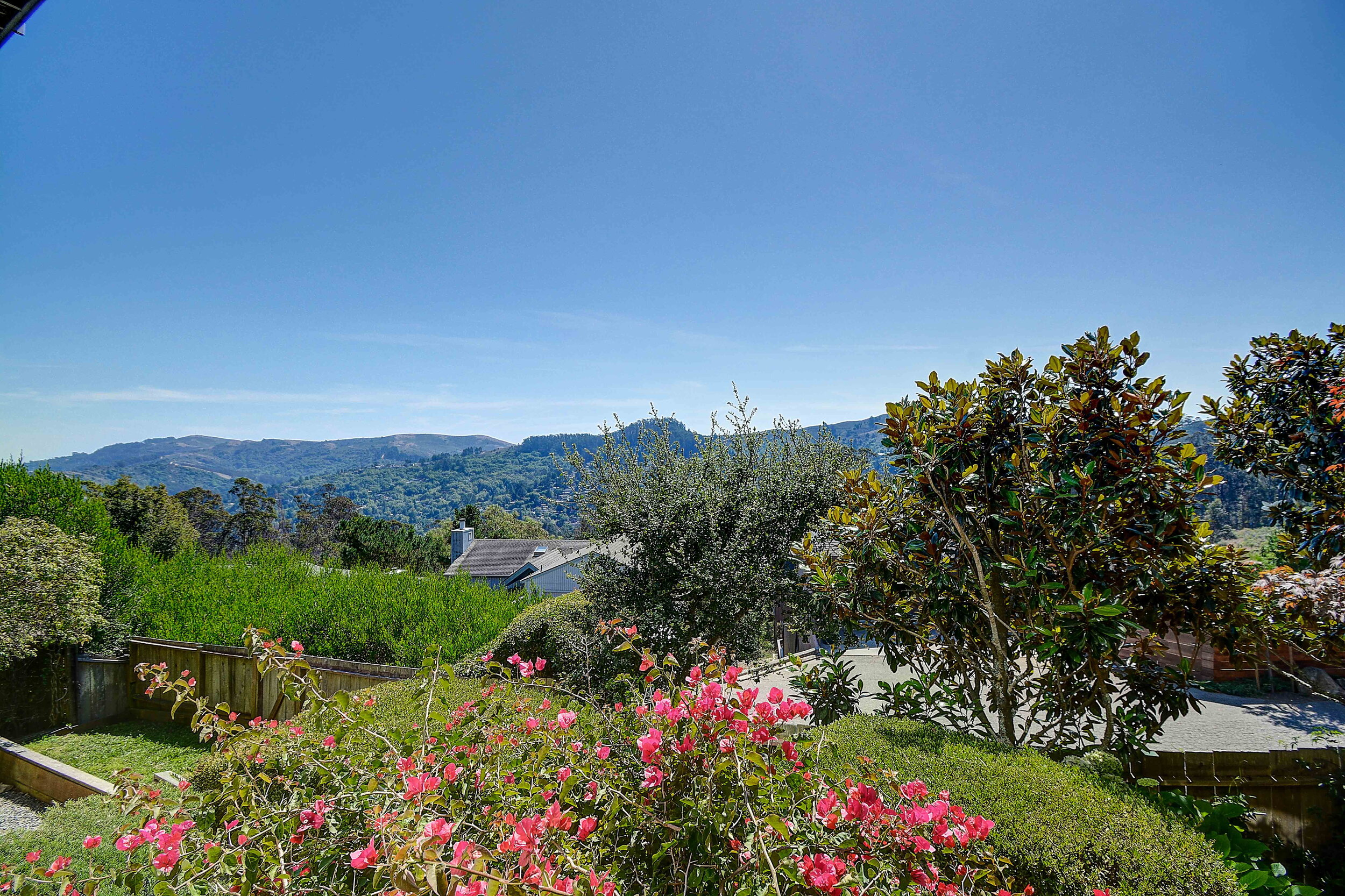 99 Skyline Terrace -48Mill Valley Real Estate - Listed by Own Marin County's #1 Realtor.jpg