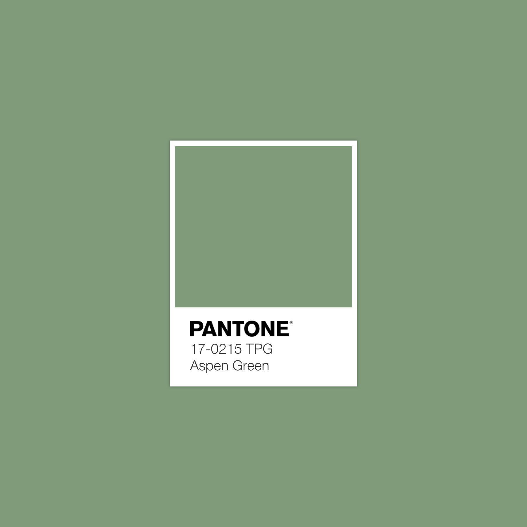 56. Pantone 17-0215