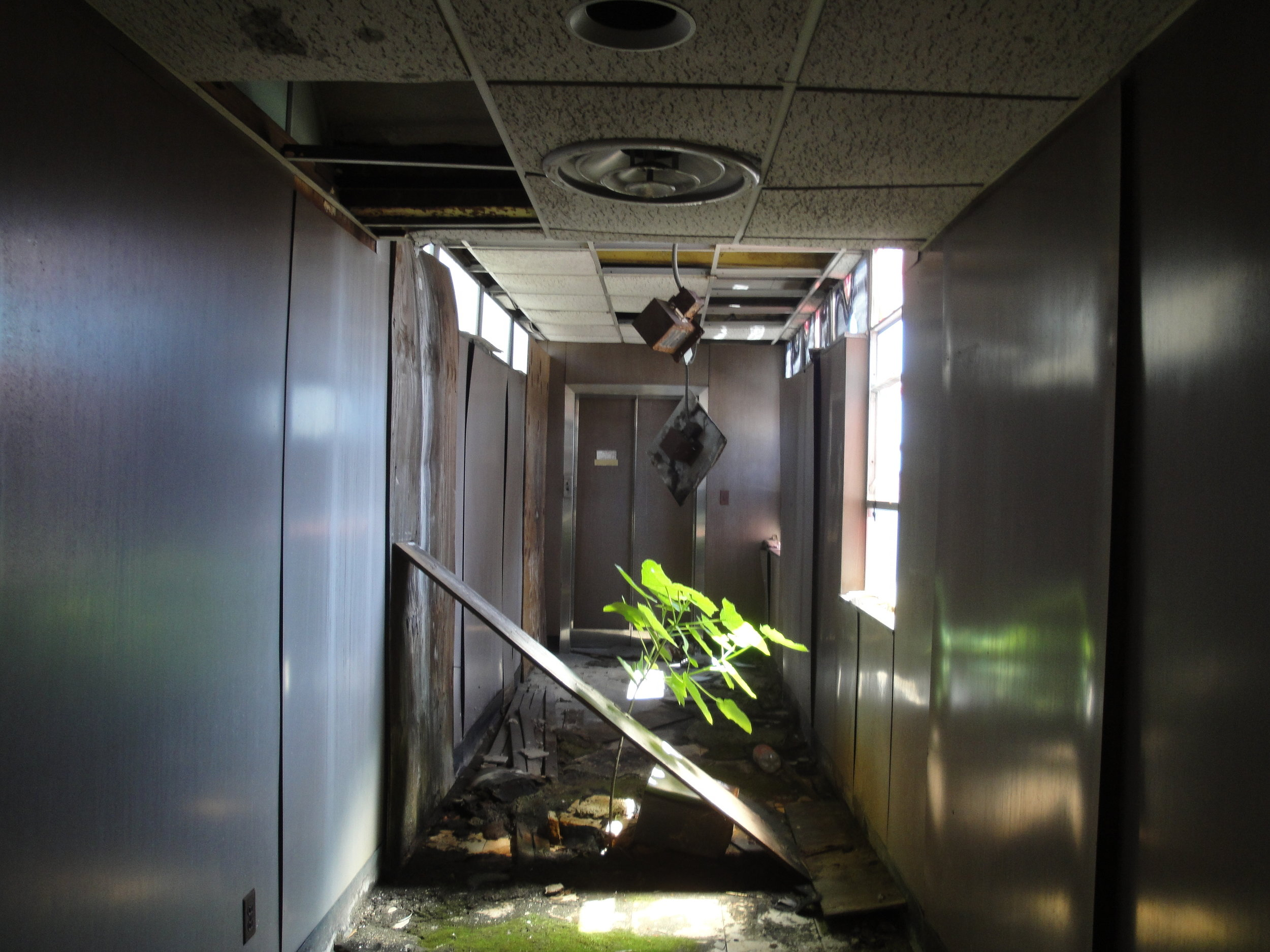 10E North Ave Hallway - Ziger Snead.JPG