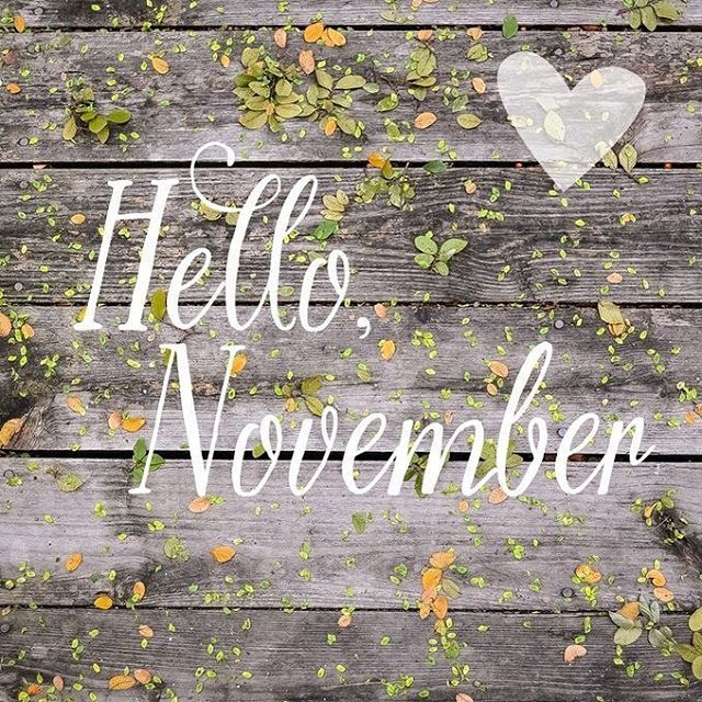 So glad you've arrived! #hellonovember