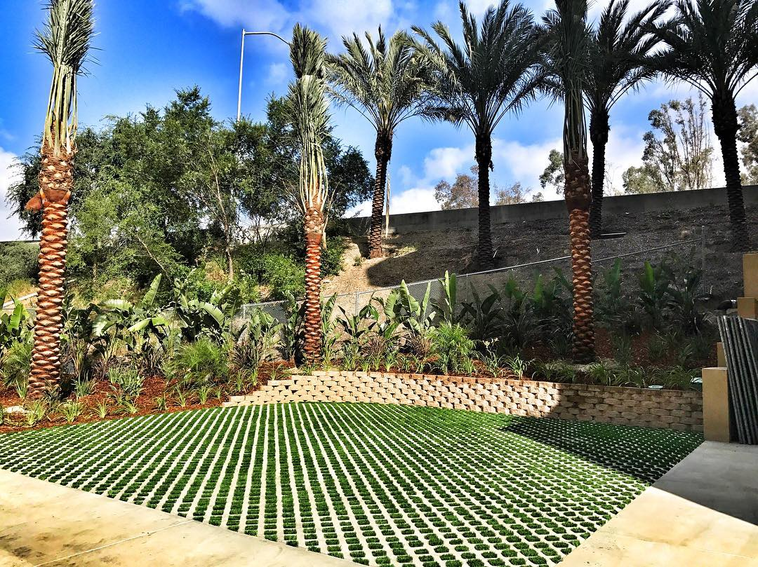 Downtown LA | Artificial Turf Block and surrounding landscape install