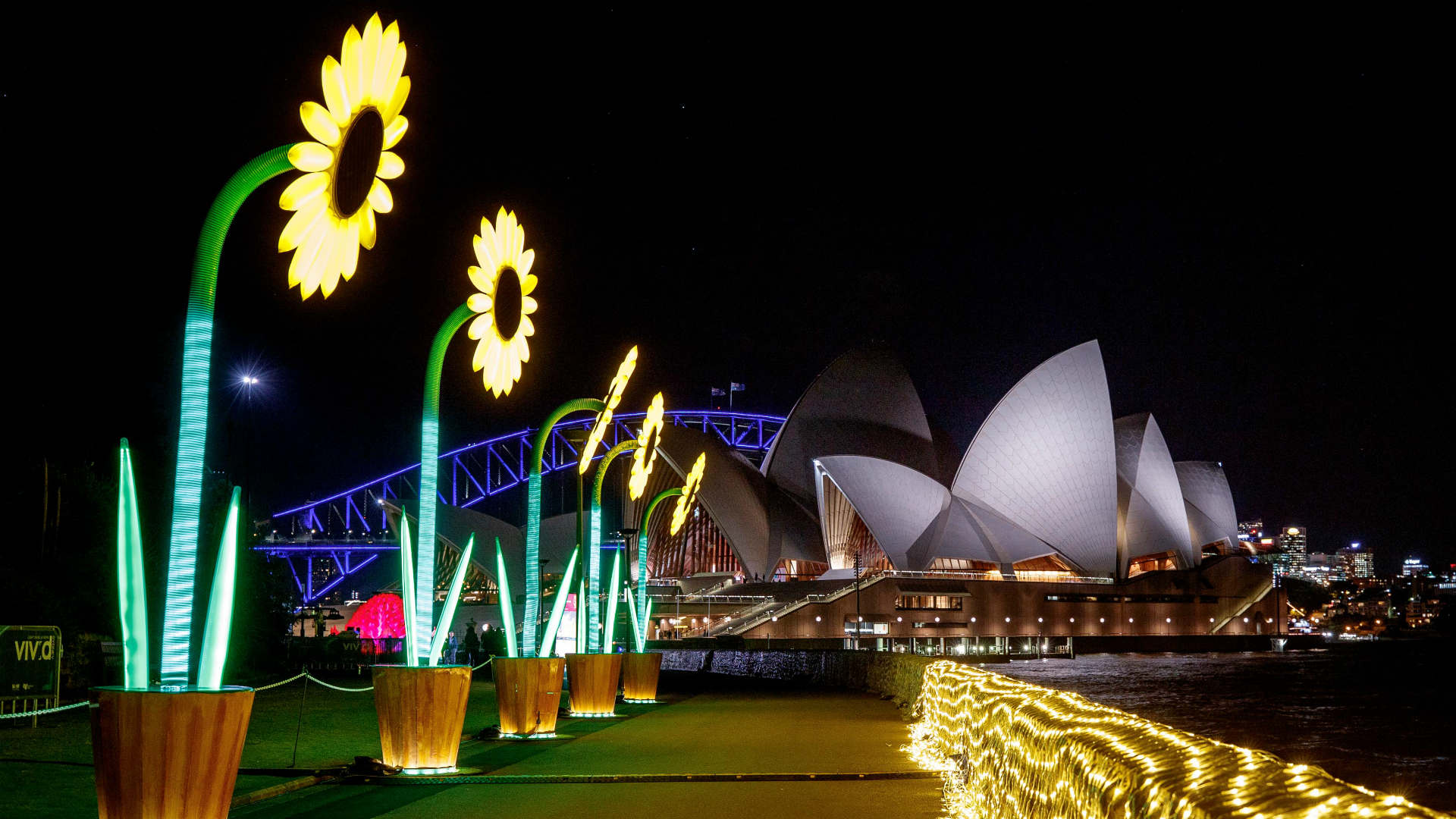 The Best Things to do in Sydney This Month Under $20 - Concrete Playground