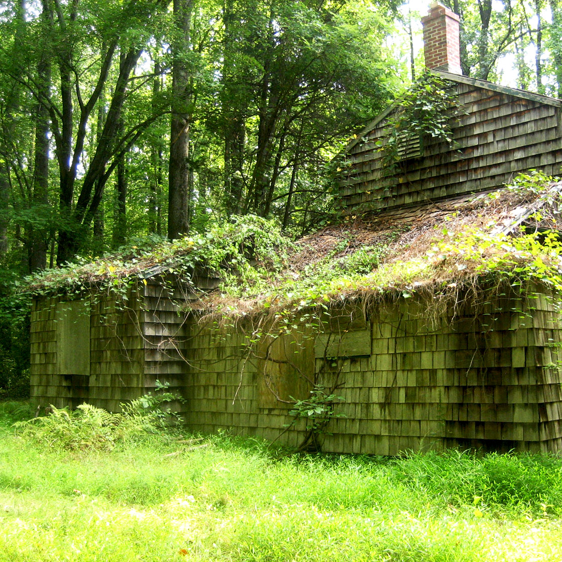 Herrontown Woods Abandoned Structure