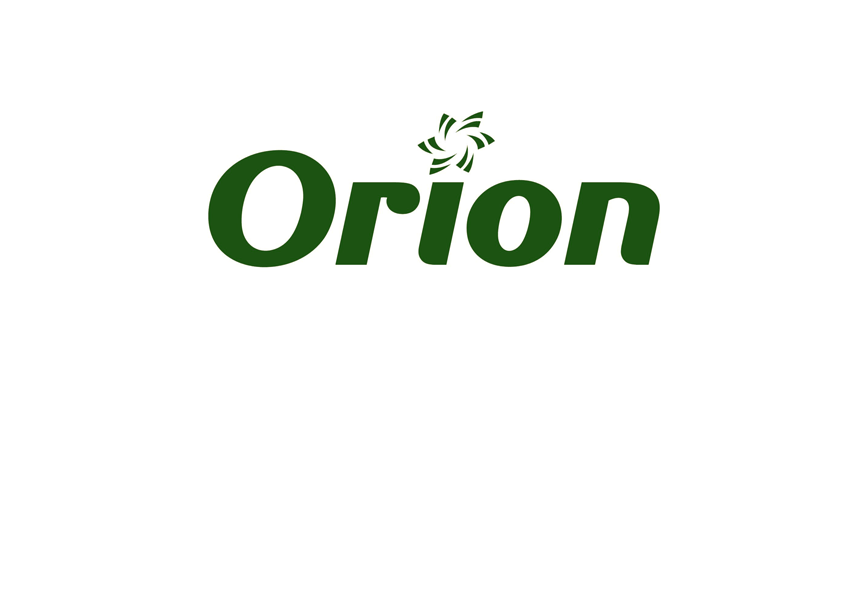 Orion – Electricity lines network