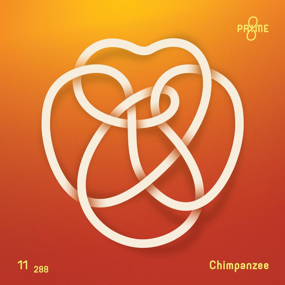 Chimpanzee-Knot-2x.jpg