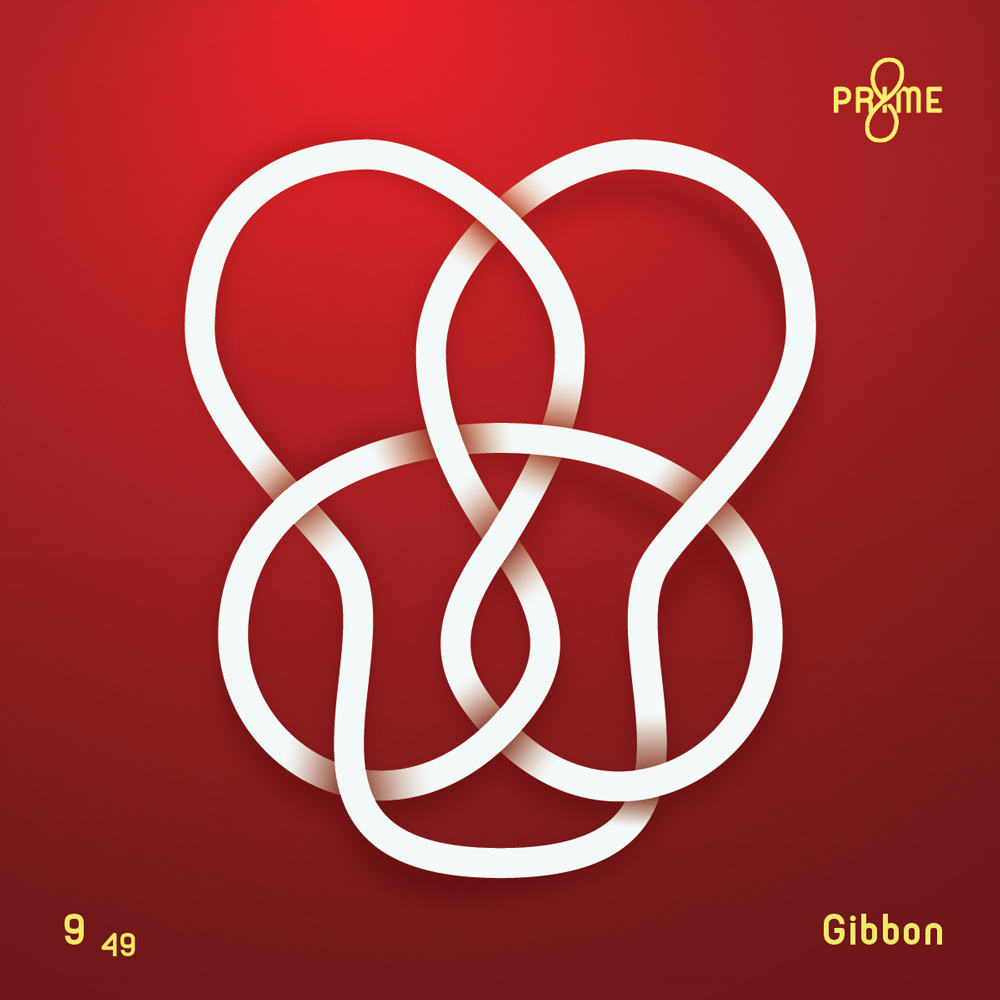 Gibbon-Knot-2x.jpg