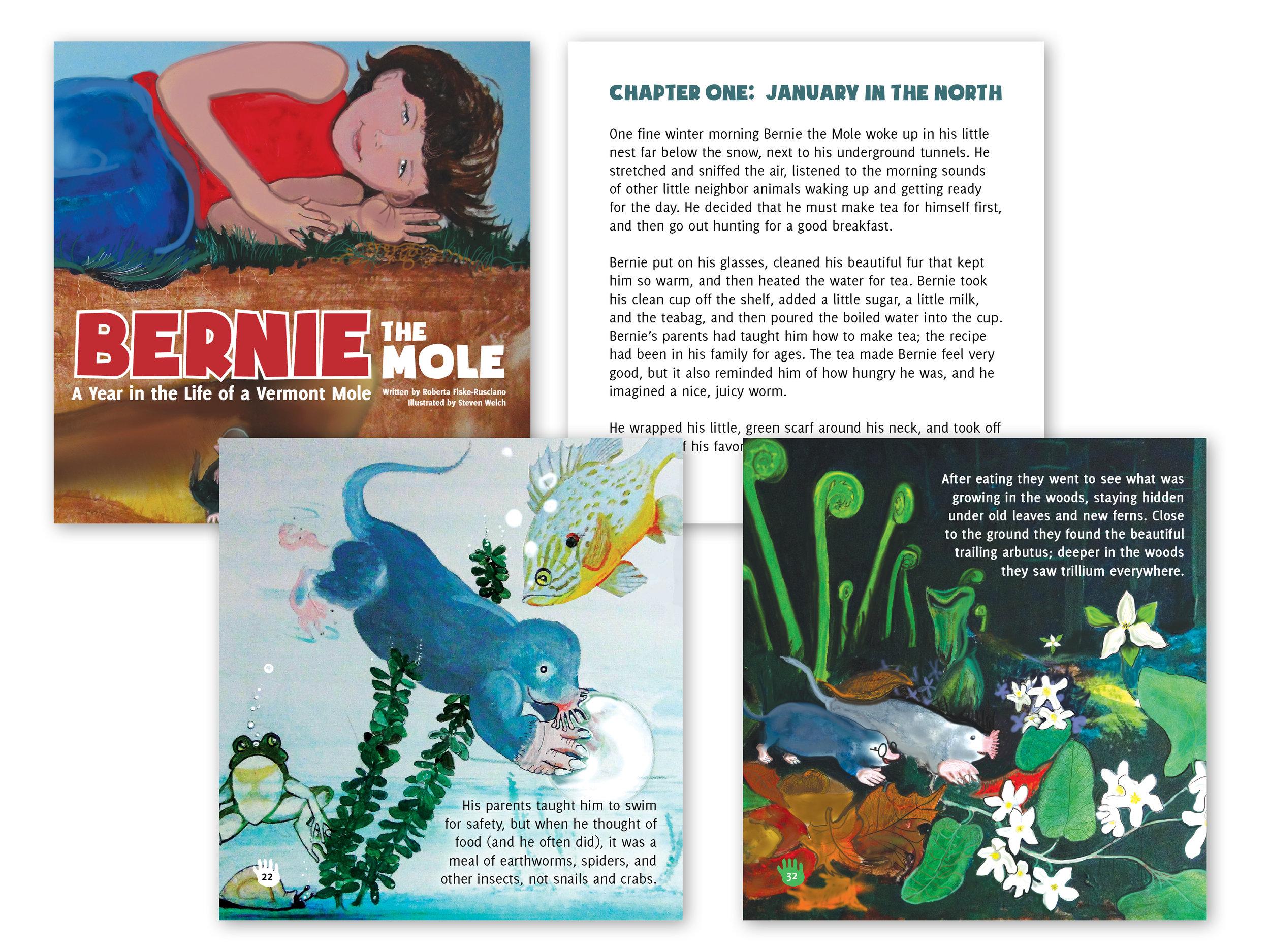 Children's Book Layout