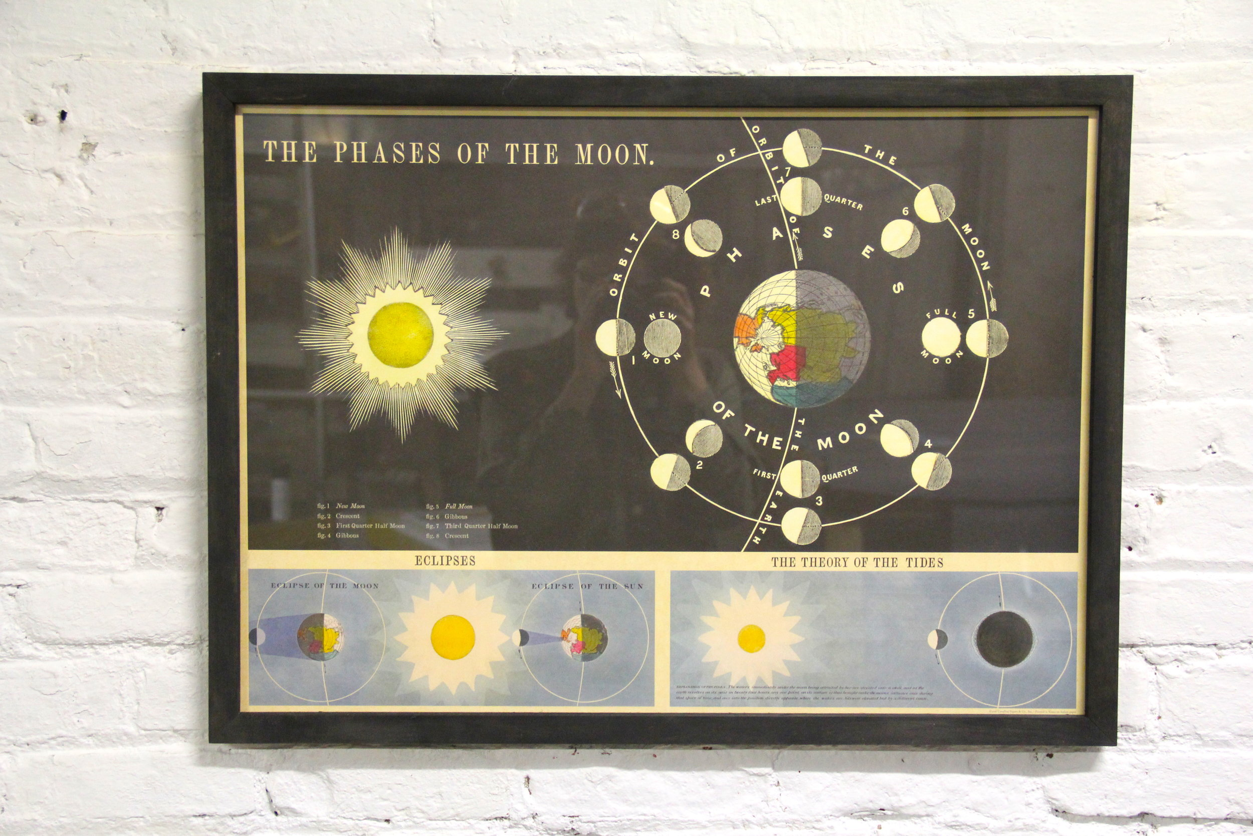 phases of the moon.JPG