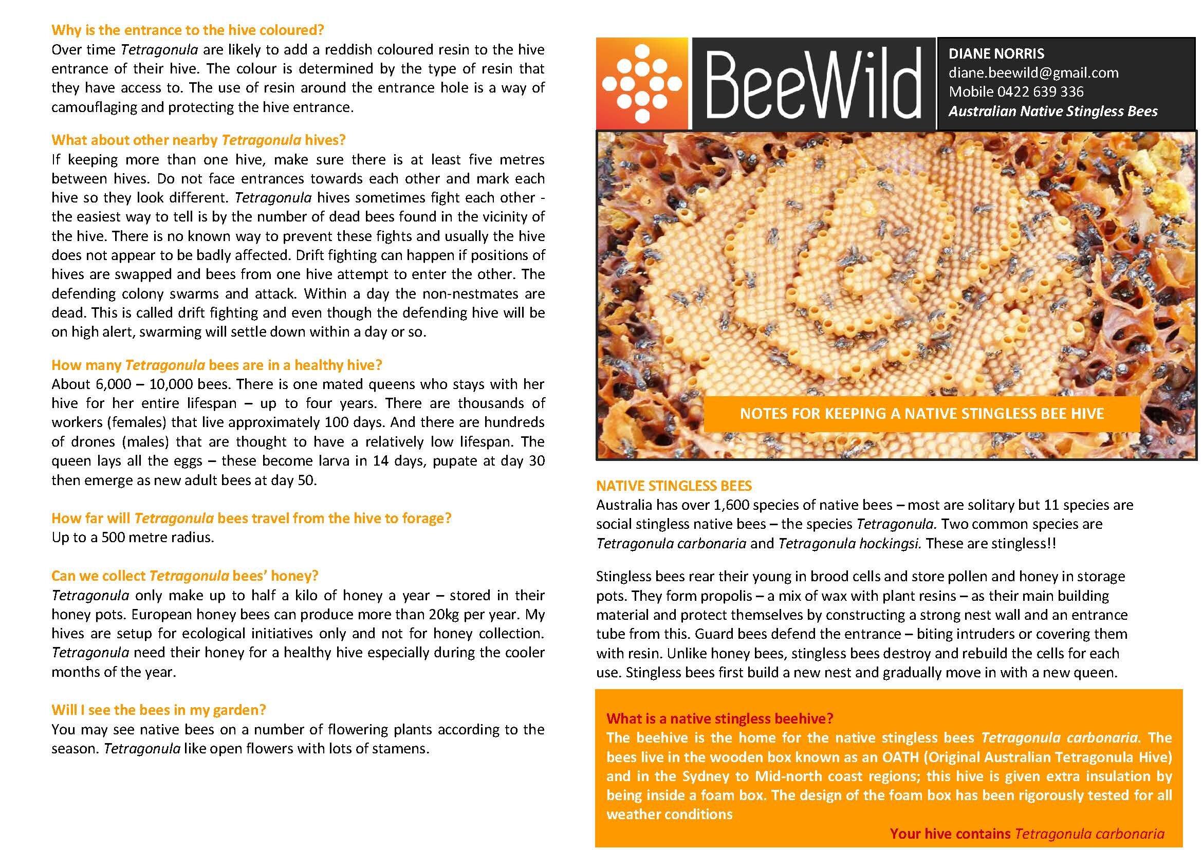BEEWILD BEE BROCHURE_Page_1.jpg