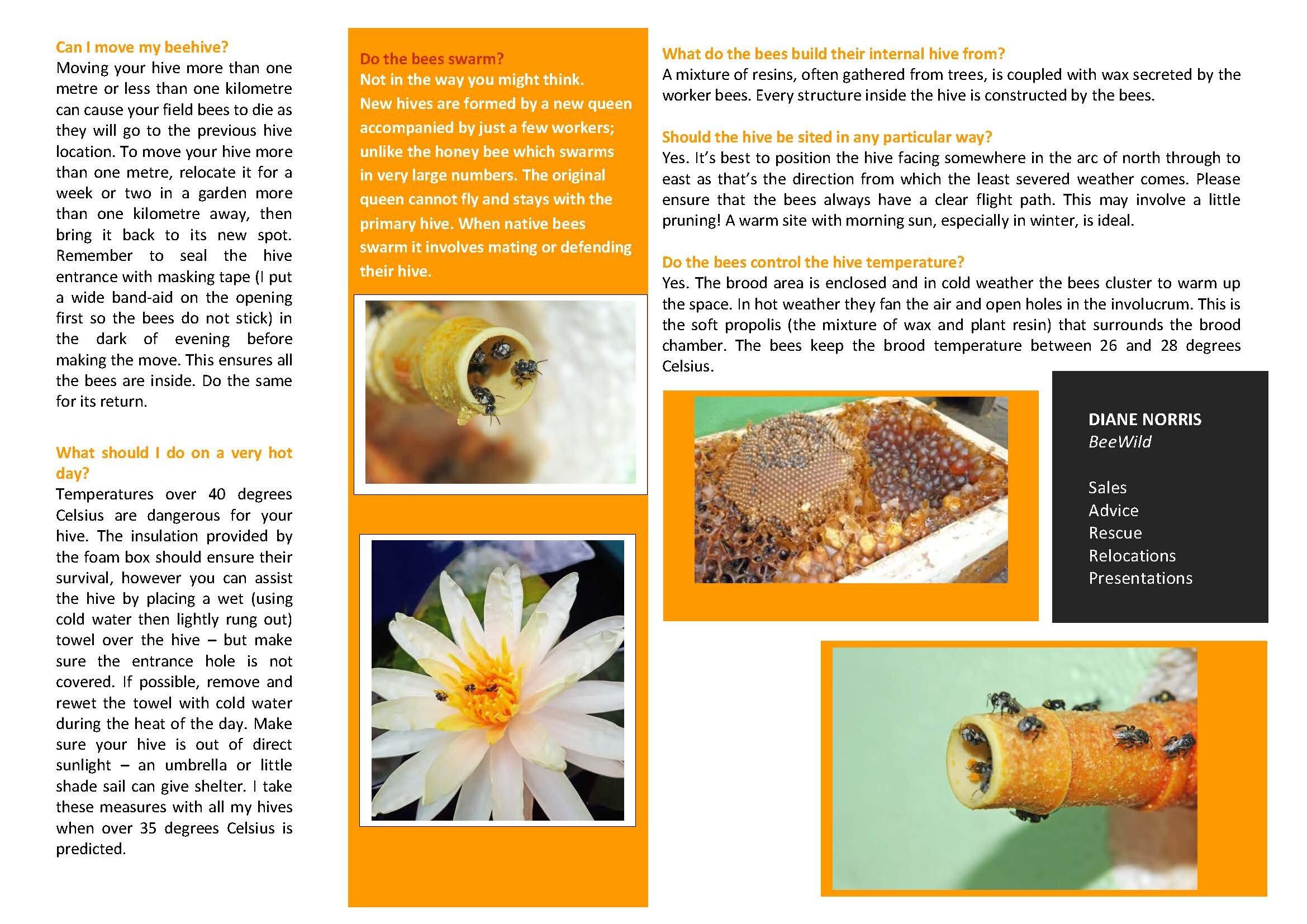 BEEWILD BEE BROCHURE_Page_2.jpg