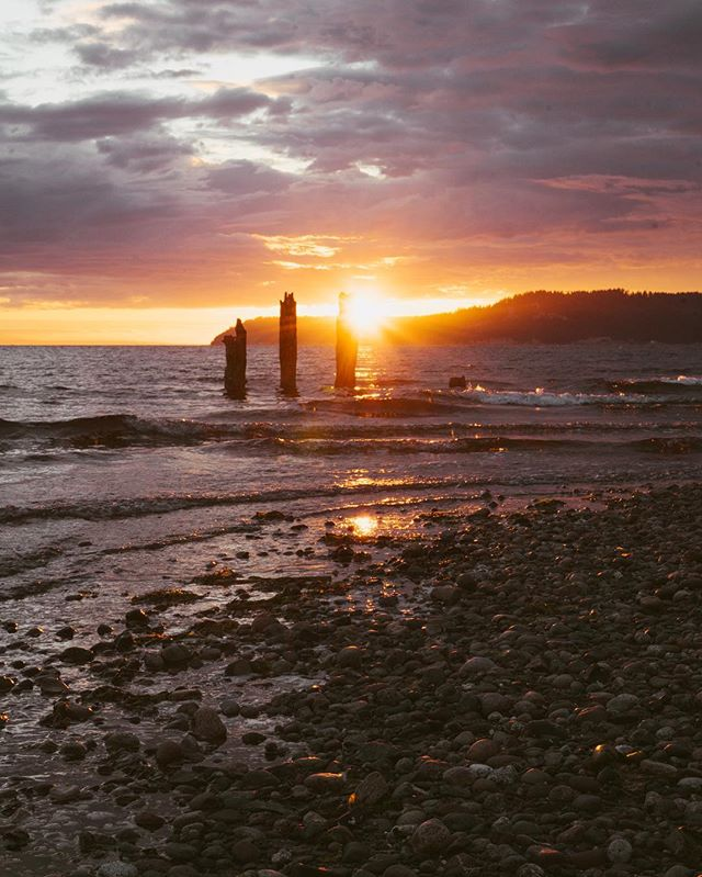 Purple and gold. . . . . . . #seattle #washington #pnw #visitseattle #seattlewa #igers_seattle #seattlepulse #upperleftusa #thatpnwlife #landscape_lovers #landscapephotography #landscapelovers #landscape_captures #landscapes #hiking #scenery #outdoors #instanature #naturelover  #natureshooters #sony #sonyalpha #sonyimages #livewashington #pnwcollective #northwestisbest #lightbeams #copperfieldimages