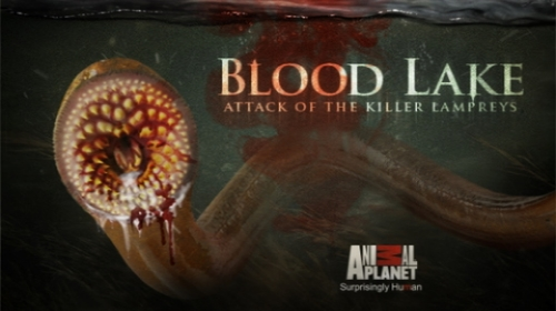 The Asylum (Sharknado)for Animal Planet's Monster Week. Starring Christopher Lloyd and Shannon Doherty.