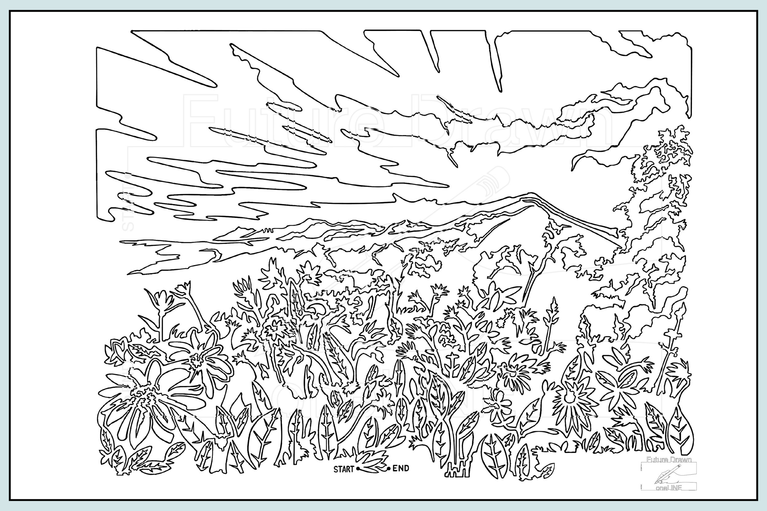 Web-Gallery Item- Mountain Daisies- oneLINE Future Drawn Applegate.jpg