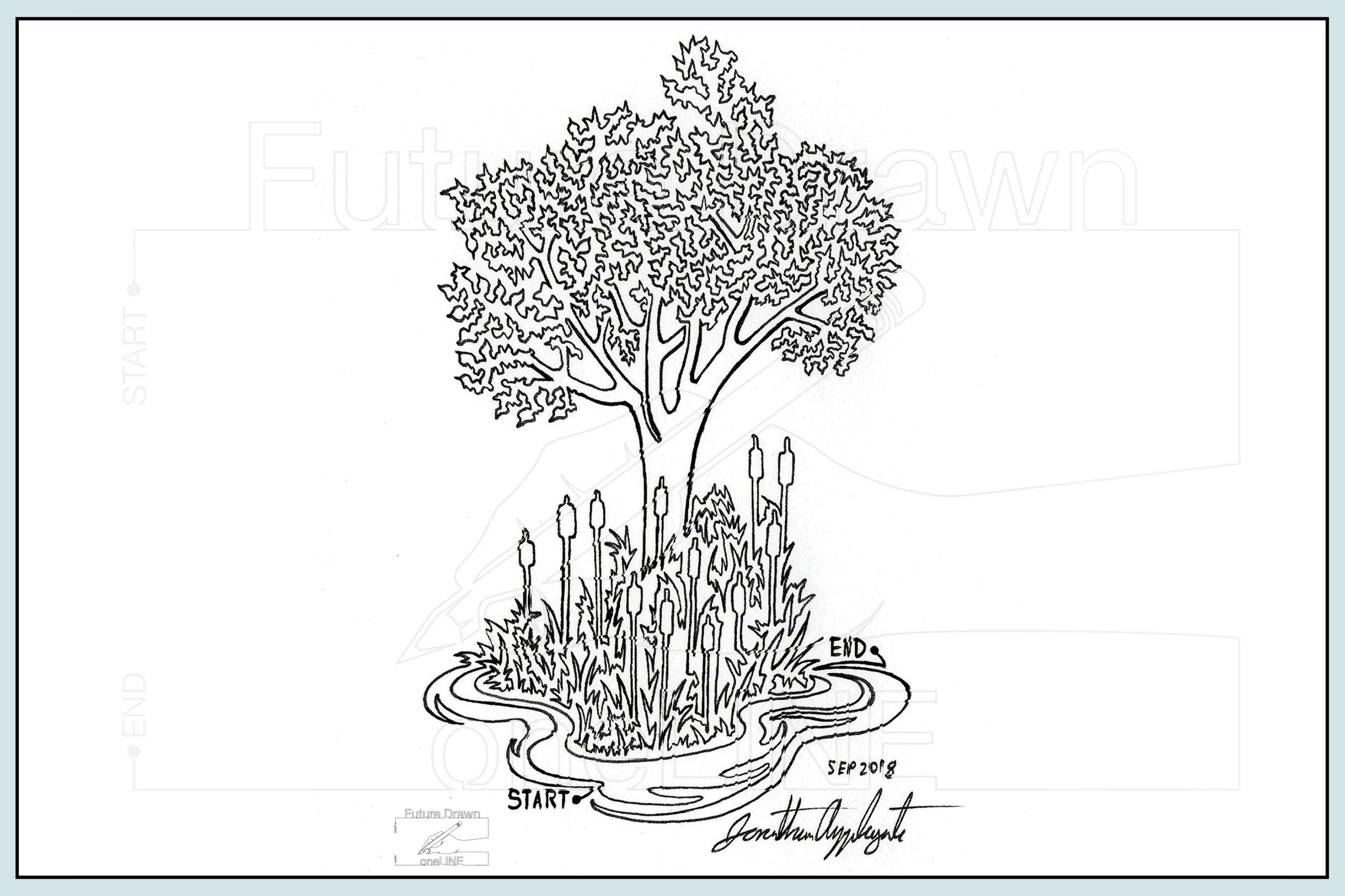 Web- Cattails and tree- oneLINE Future Drawn Applegate.jpg