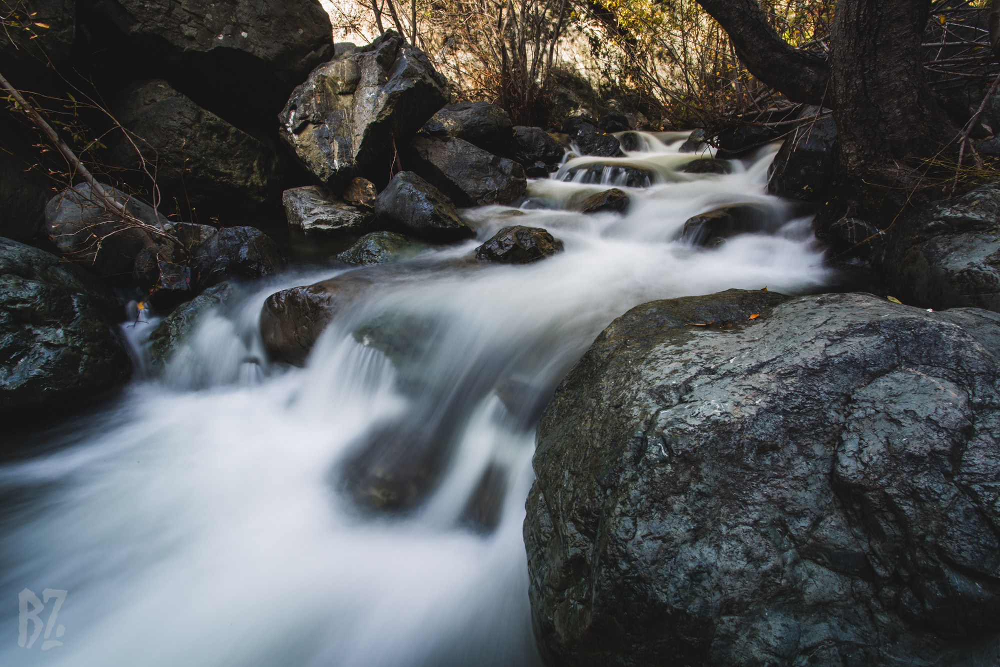 Salmon Creek-3.jpg