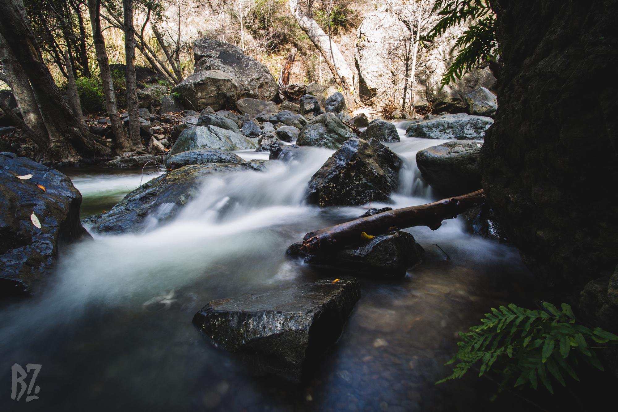 Salmon Creek-7.jpg