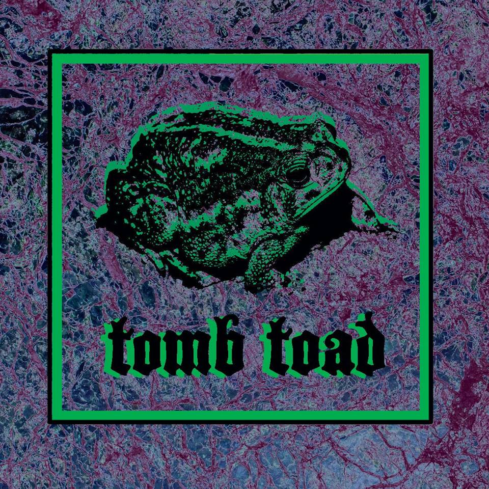 tomb toad.jpg
