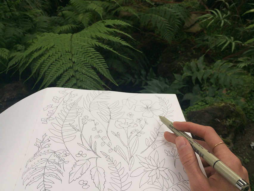 A little sketch inside the Fern room at the Berlin-Dahlem Botanical gardens. It felt like home in there, so I sat down and stayed a while.