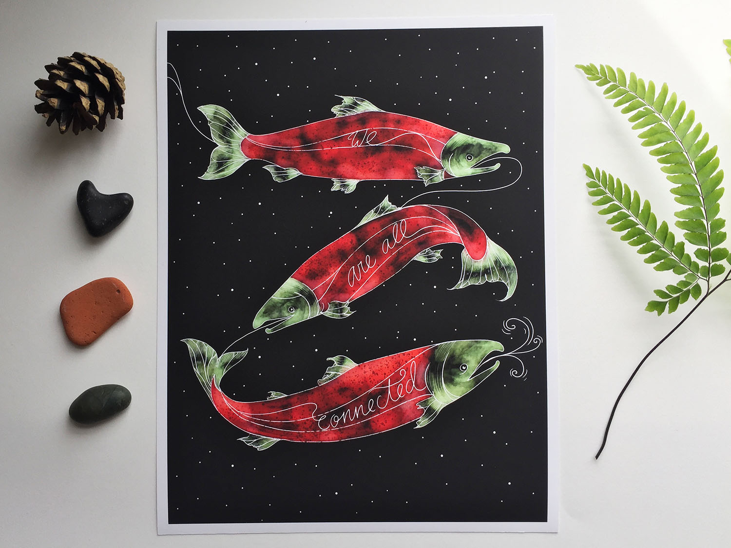 sarahclement-connected-salmon-photo-web-4.jpg