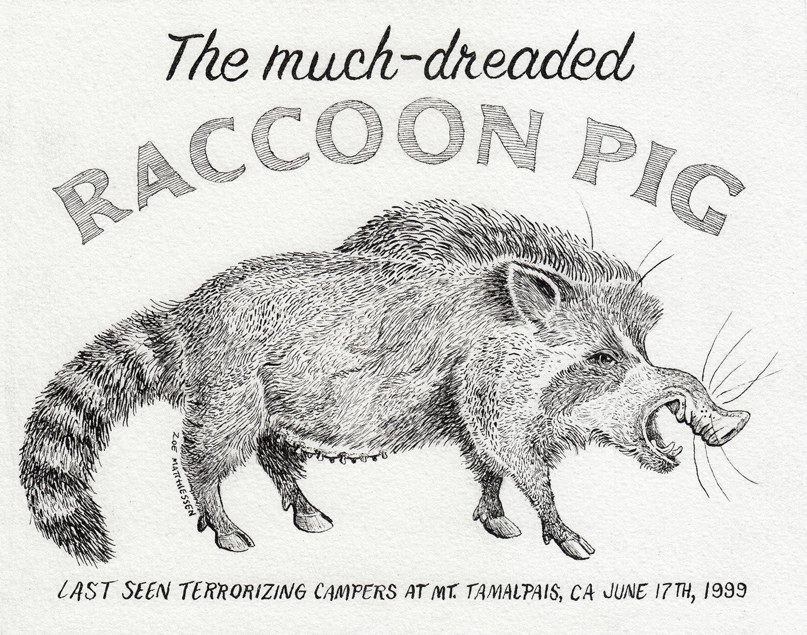 raccoonPig.jpg
