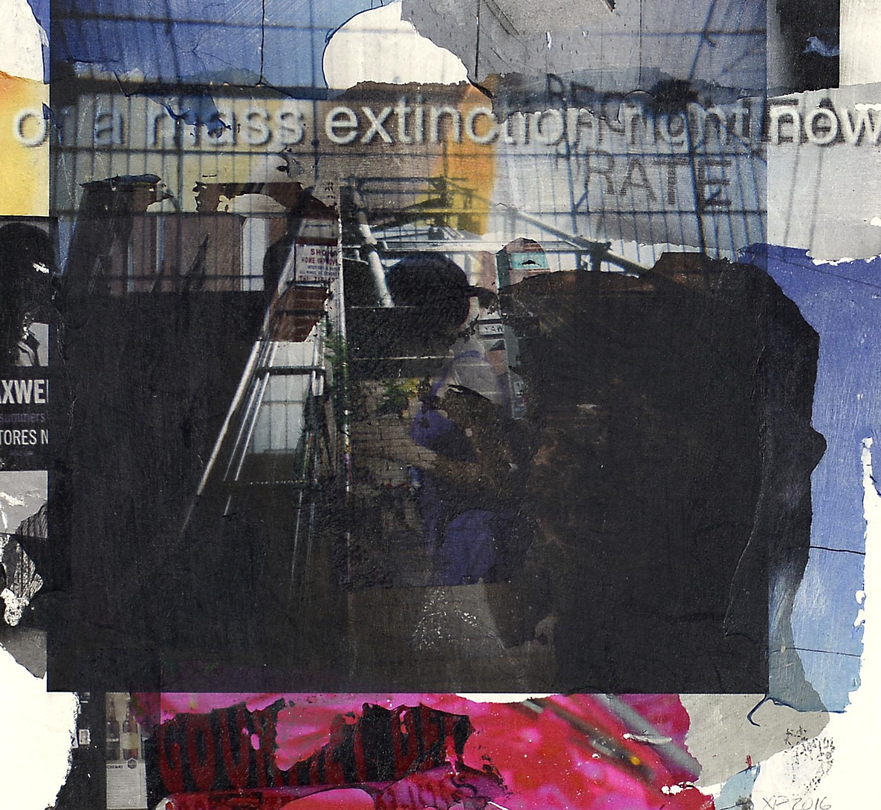 Mass Extinction 16.JPG